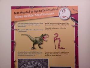 An example of my illustrations being used in the exhibition interpretation