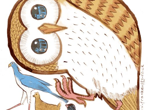 Owl illustration for book