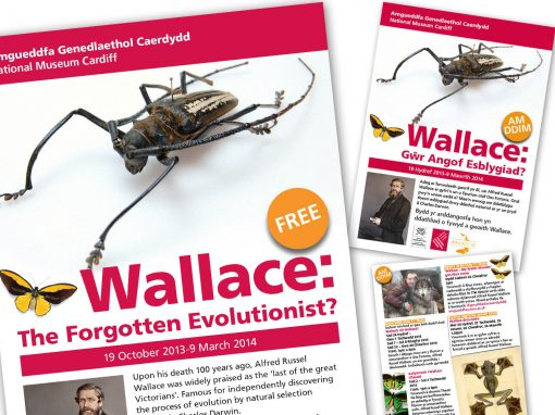 Promotional materials for National Museum Cardiff