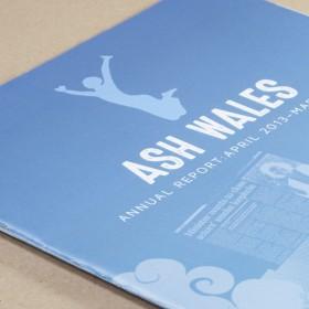 Annual Report for ASH Wales Cymru