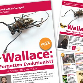 Alfred Russel Wallace promotional leaflet