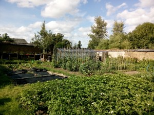 the first walled garden