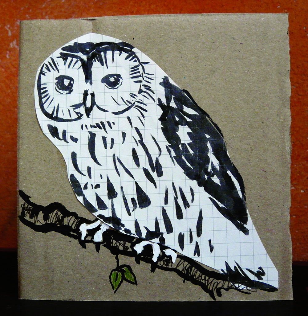 Collage illustration of a tawny owl