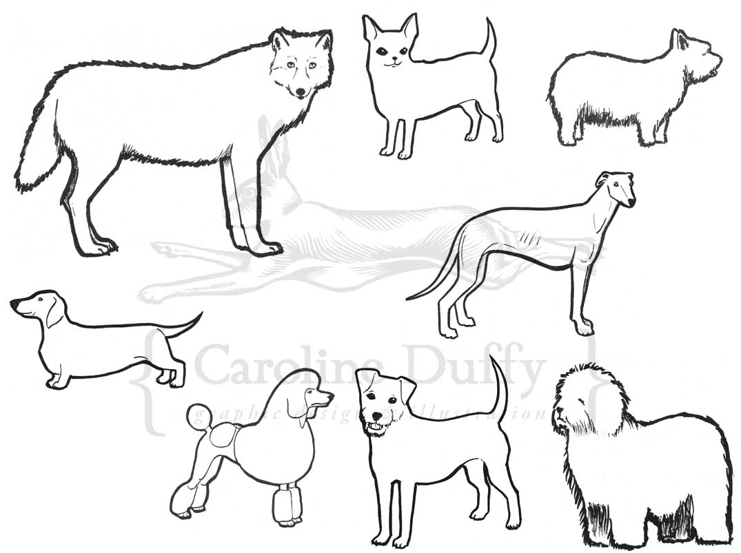 dog breed illustrations