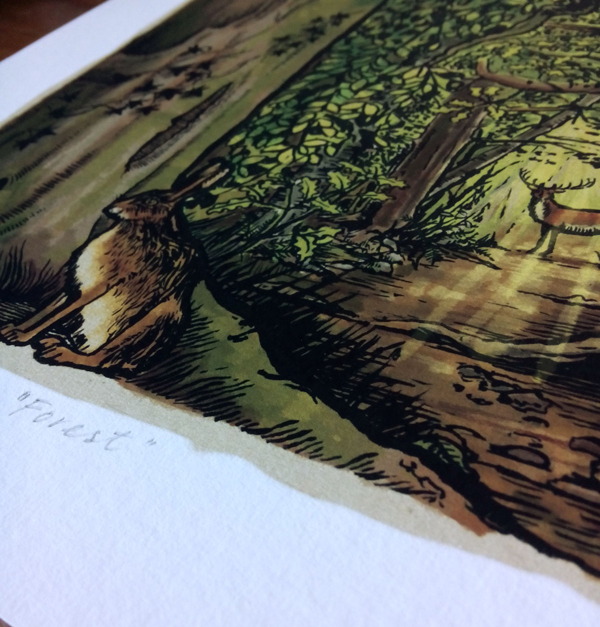 forestprint